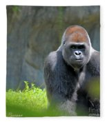 Gorilla Stare Fleece Blanket