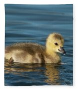 Gosling.. Fleece Blanket