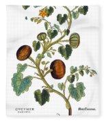 Gourd, 1735 Fleece Blanket