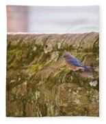 Governor's Palace Bluebird Fleece Blanket