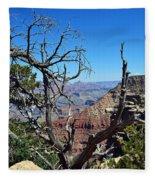 Grand Canyon 13 Fleece Blanket