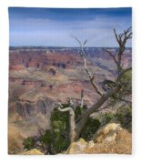 Grand Canyon 4 Fleece Blanket