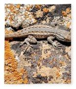 Grand Canyon Lizard Fleece Blanket
