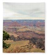 Grand Canyon No 2 Fleece Blanket