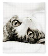 Grand Kitty Cuteness Bw Fleece Blanket