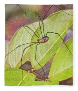Grandaddy Long Legs Fleece Blanket