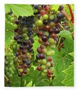 Grape Harvest Fleece Blanket