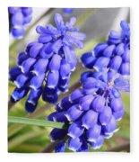 Grape Hyacinth Closeup Fleece Blanket