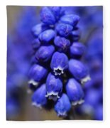Grape Hyacinth - Muscari Fleece Blanket
