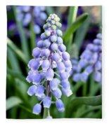 Grape Hyacinths Closeup Fleece Blanket