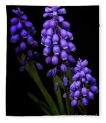 Grape Hyacinths Fleece Blanket