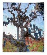 Grapes Aloft Fleece Blanket