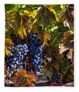 Grapes Of The Napa Valley Fleece Blanket
