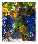 Grapes Ready For Harvest Fleece Blanket