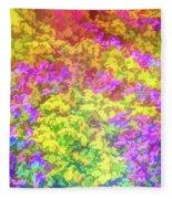 Graphic Rainbow Colorful Garden Fleece Blanket