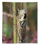 Grasshopper Fleece Blanket