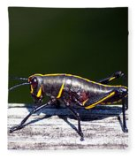 Grasshopper Nymph Fleece Blanket