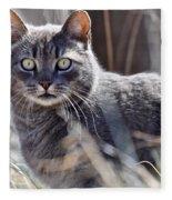 Gray Cat In Woods Fleece Blanket