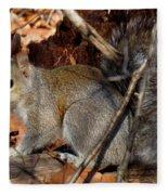 Gray Squirrel Fleece Blanket