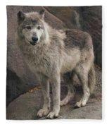 Gray Wolf On A Rock Fleece Blanket