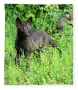 Gray Wolf Pup Fleece Blanket