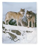 Gray Wolves Canis Lupus In A Forest Fleece Blanket