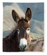 Grazing Burros Fleece Blanket