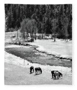 Grazing Bw Fleece Blanket