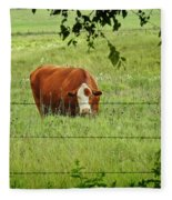 Grazing Cow Fleece Blanket
