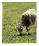 Grazing Fleece Blanket