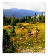 Grazing Elk Fleece Blanket