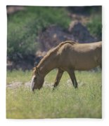 Grazing Wild Mustang  Fleece Blanket