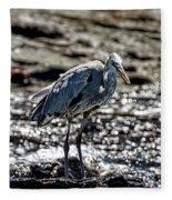Great Blue Heron In Galapagos Fleece Blanket