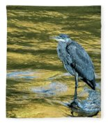 Great Blue Heron On A Golden River Vertical Fleece Blanket