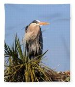 Great Blue Heron On Nest In A Palm Tree Fleece Blanket