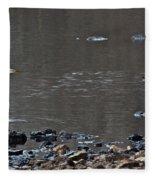 Great Blue Heron Wading 1 Fleece Blanket