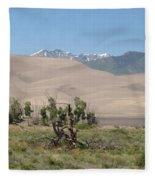 Great Dunes Trifective Range  Fleece Blanket