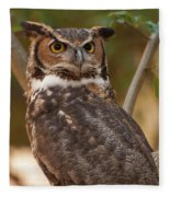 Great Horned Owl In A Tree 3 Fleece Blanket