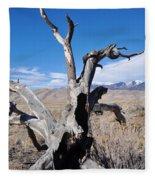 Great Sand Dunes National Park Fallen Tree Portrait Fleece Blanket