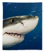 Great White Shark Fleece Blanket