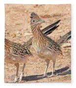 Greater Roadrunner Bird Fleece Blanket