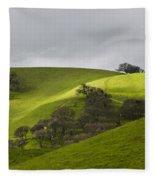 Green 3 Fleece Blanket