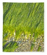 Green Algae On Rock Fleece Blanket