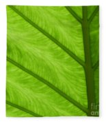 Green Fleece Blanket