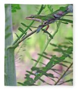Green Anole Fleece Blanket