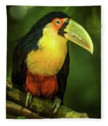 Green-billed Toucan Perched On Branch In Jungle Fleece Blanket