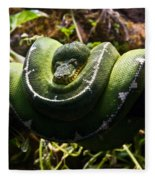 Green Boa Fleece Blanket