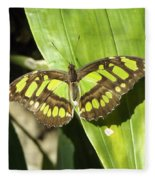 Green Butterfly Fleece Blanket
