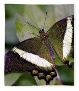 Green Butterfly Fleece Blanket