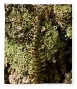 Green Centipede Fleece Blanket